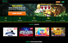 screen-wild-casino-1