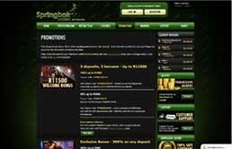 Springbok Casino printscreen 3